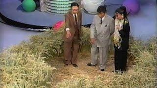 Crop Circles UK 1991 Japanese TV Special