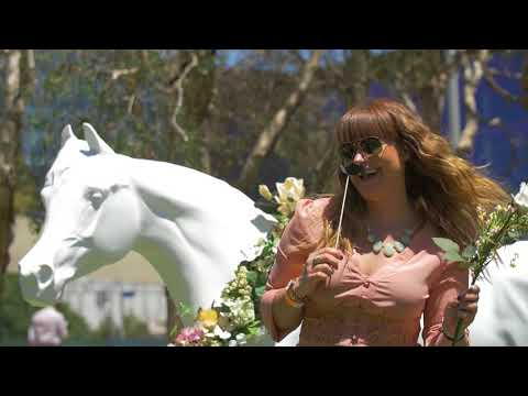 Social Playground Social360 at Darling Harbour - Melbourne Cup 2017 (20 sec edit)