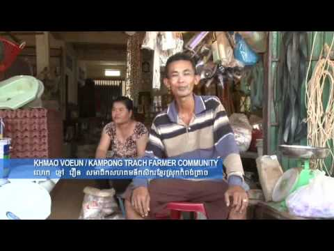 USAID Cambodia MSME Project - Khmer - Lucky Pigs of Kampong Trach - Part 1
