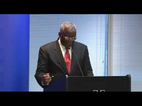 Ibrahim Gambari - Prospects for a Durable Peace in Darfur (2011)