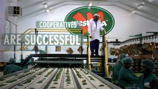 International Year of Cooperatives 2012: Cooperative Enterprises Build a Better World