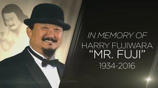 A special look at Mr Fujis legendary career