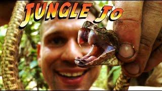 Tödlich giftige Schlangen | Jungle Jo