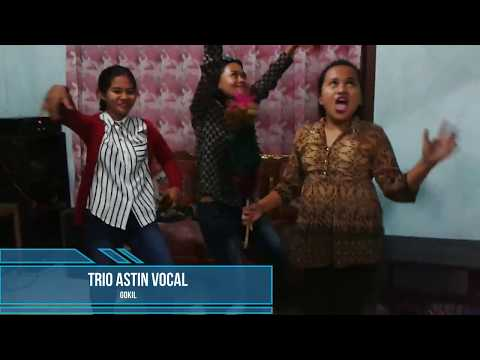 johan astin vocal vs trio micin