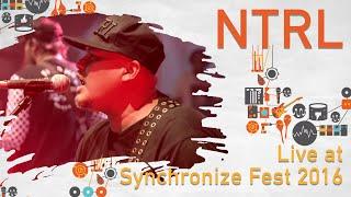 NTRL live at Synchronize Fest - 28 Oktober 2016