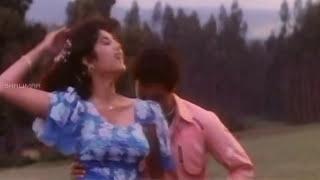 Dharamakshetram Movie || Cheli Nadume Andham Video Song || Balakrishna,Divya Bharati