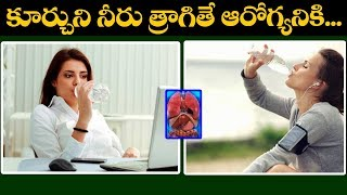 Health Tips: Why should we drink water while sitting up? | Latest Health Updates | VTube Telugu