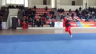 Jemal Iremadze - Nanquan 1st international routine