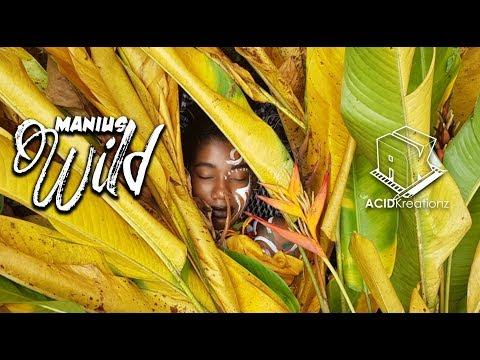 Mantius - Get Wild (St. Lucian Soca 2018)