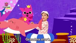 Vũ Điệu Bé Cá mập - Bài Hát Động Vật - Baby Shark Dance - Nhạc Thiếu Nhi Tiếng Anh Hay Nhất