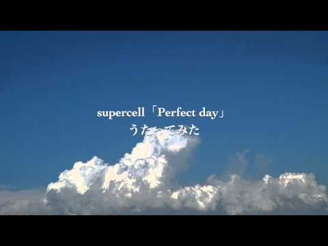 Supercell「Perfect Day」歌ってみた