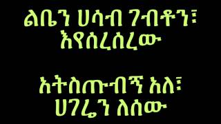 Aster Aweke - Hagere ሃገሬ (Amharic With Layrics)
