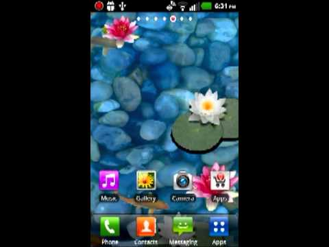 3D Koi Pond Live Wallpaper