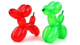 Fun Balloon Dogs How to make super Cute Balloon Dog