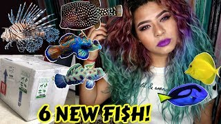 UNBOXING THE MOST EXPENSIVE RARE FISH IVE EVER OWNED! (SALTWATER)