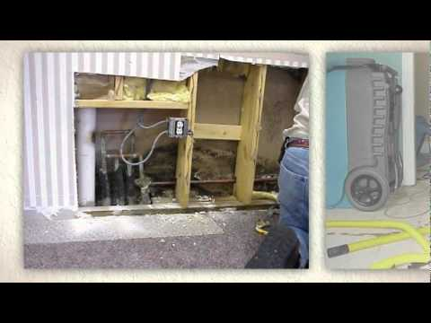 Toxic Mold Remediation Atlanta
