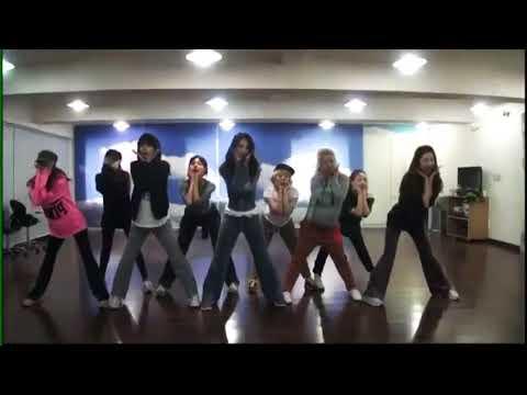 SNSD - I Got A Boy Dance Practice (Mirrored)
