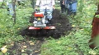 AGRIA 3002G