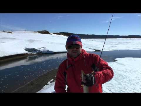 рыбалка на чепце на спиннинг