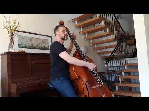 Camille Saint-Saens Elefant, Kontrabass und Klavier vom Band