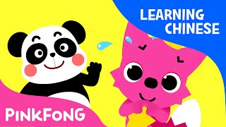 Sorry, That's OK   Chinese Learning Songs   Chinese Kids Songs   PINKFONG Songs for Children