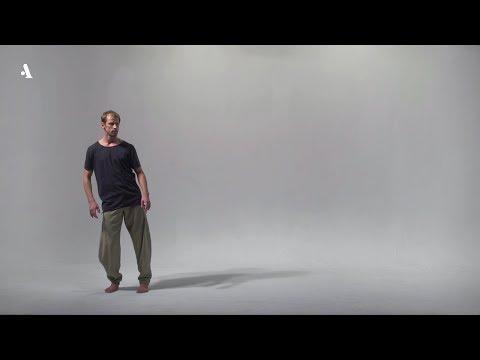 9 языков современного танца. Охад Нахарин