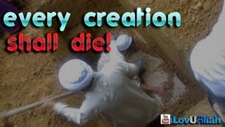 Every Creation Shall Die!