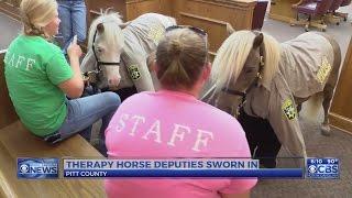 Pitt County swears in mini-horse deputies