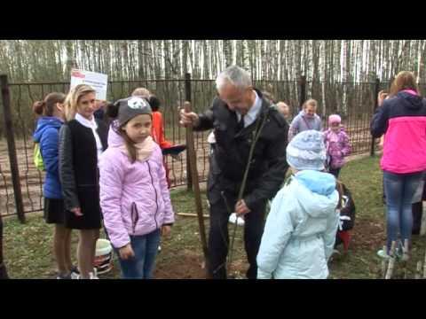 Десна-ТВ: День за днем от 5.05.2016