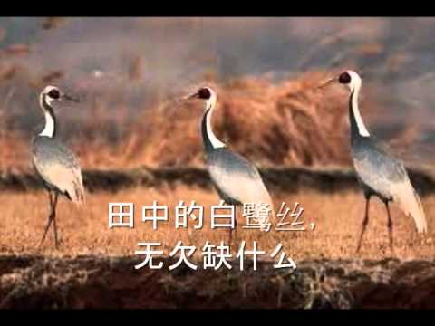 耶和华祝福满满 (hokkien Christian Song With Lyrics) video