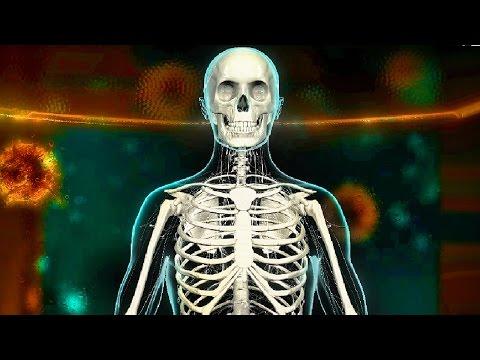 Скачать игру Bio Inc - Biomedical Plague на Android