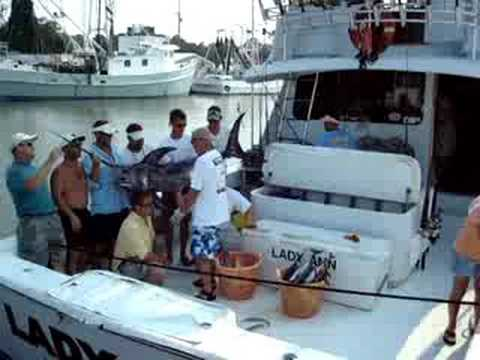 Big Swordfish Caught off Dauphin Island, Alabama