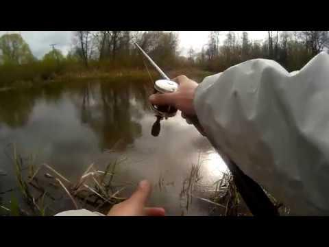 ловля щуки весной перед нерестом видео