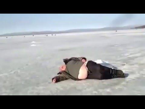 тюлень на рыбалке ютуб