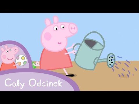 Peppa Pig (Świnka Peppa) - Ogrodnictwo (Cały odcinek po polsku)