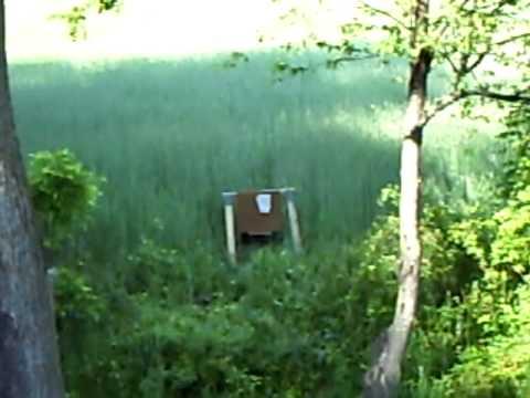 cutting grass wirh a mosin nagant 91/30