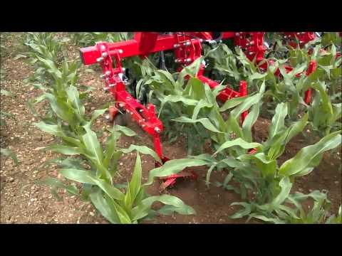Macchinario agricolo Sarchiatrice con assolcatori - www.zillisnc.it - a San Quirino PN