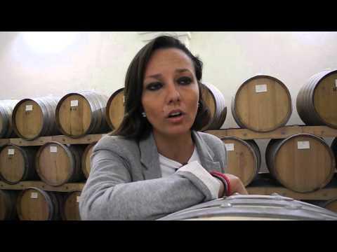 Intervista ad Annamaria Sala