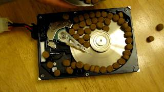 Seagate Barracuda 7200.7 Performance Test