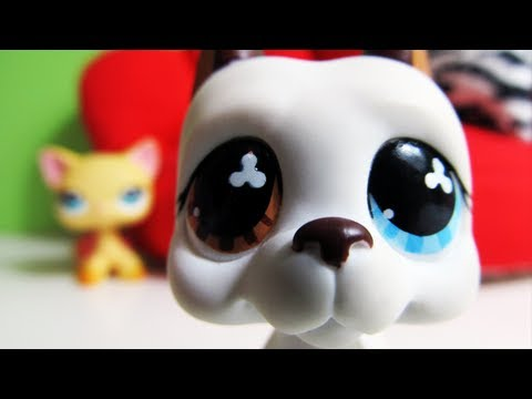 Littlest Pet Shop: Popular (Episode #13: Operation Fry the Sausage)