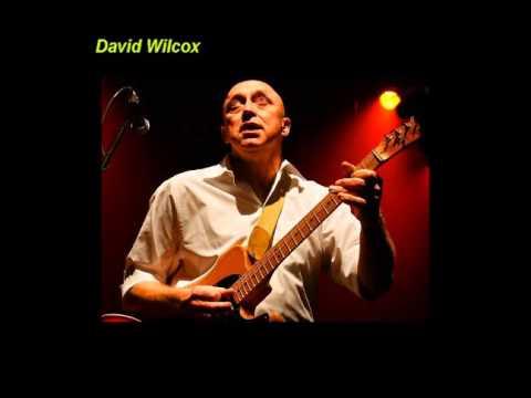 David Wilcox - Push, Push, Push