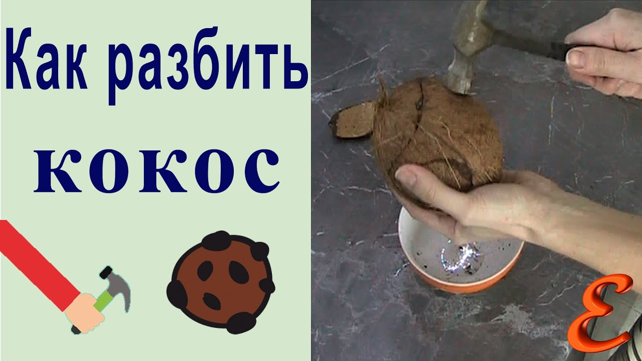 Как расколоть кокос в домашних условиях молотком 691