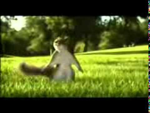 Kate Nahi Kat Te Din Yeh Raat video