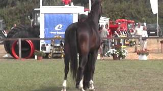 FARMER EXPO 2009.wmv