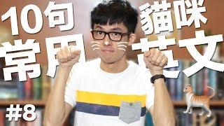 阿滴英文 10個常用英文句子【貓咪篇】feat. 囧星人