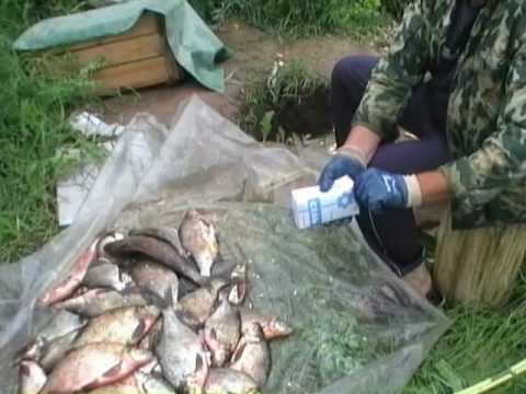 воротынец рыбалка на волге