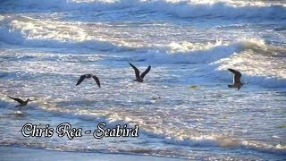 Watch Chris Rea Seabird video