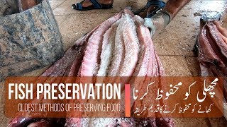 Gwadar Fish Preservation | Oldest methods of preserving food |