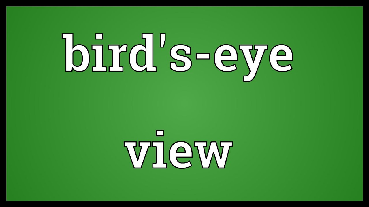 Birds Eye View Definition Bird's-eye View Meaning