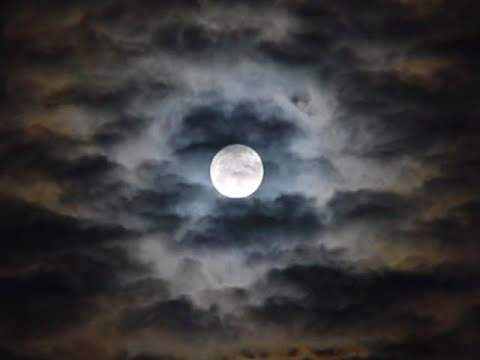 Javier Solís & Miguel Aceves Mejía - Luz de luna